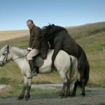 Storie di cavalli e uomini (nudi)